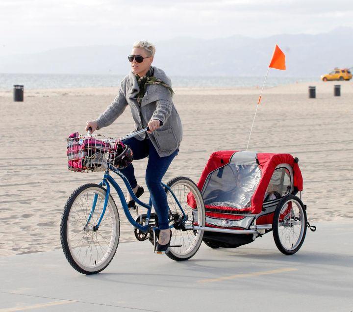 Pink and Cary Hart take their daughter and family members for spin in Santa Monica.