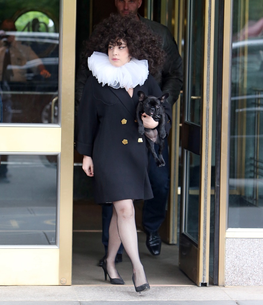Lady Gaga with a puppy and a giant wig in New York City