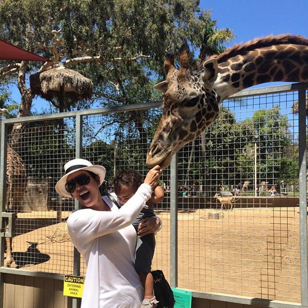 North West feeds the giraffes!