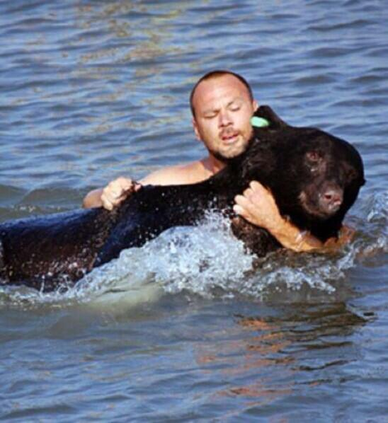 Man Saves Drowning Bear In Florida.