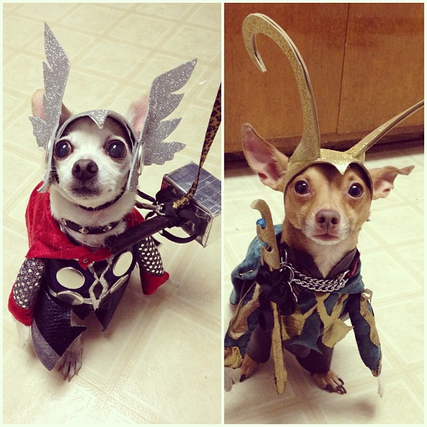This is Thor and Loki.