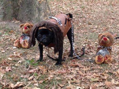 Michonne and her zombies.