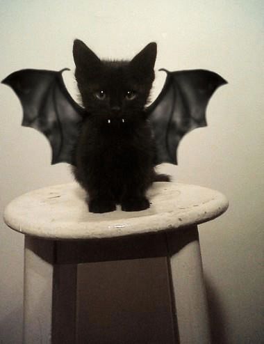 Bat at it.