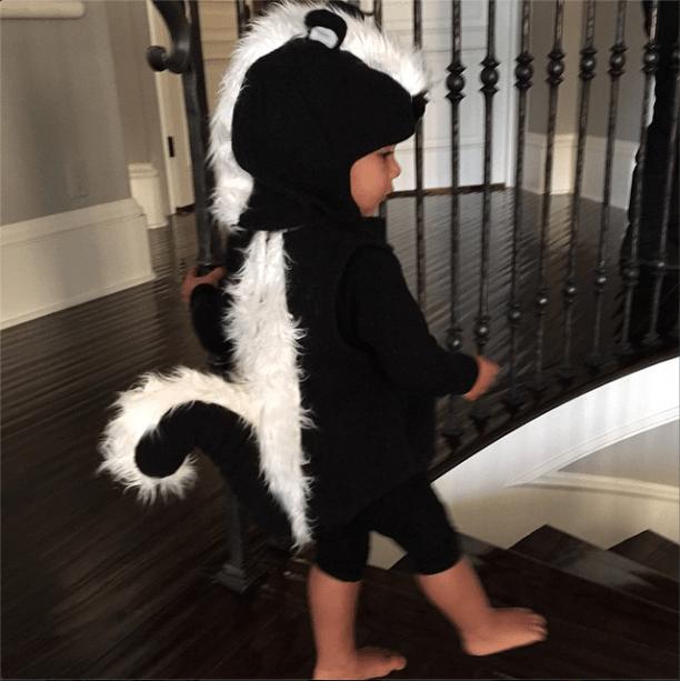 Happy Halloween from cutie Skunk West.