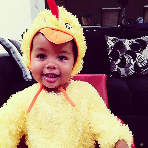 The Bash is a little chicken nugget!