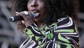 Angie Stone at Soulfest Music Festival