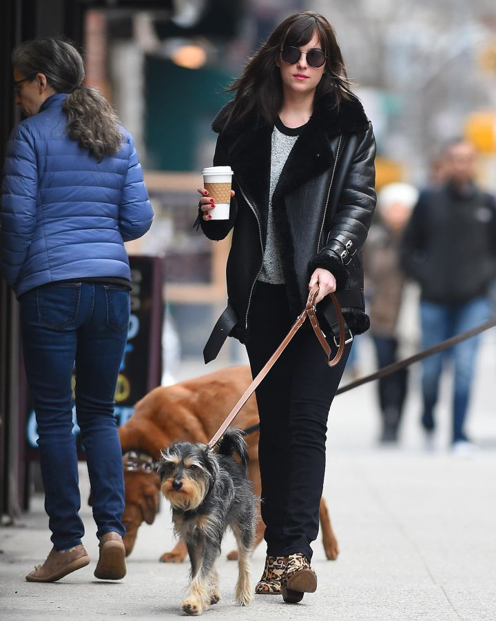 What a multitasker! Dakota Johnson walks her dog Zeppelin while making a coffee run in New York City.