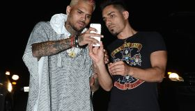 chris brown at 2015 coachella music festival with fan