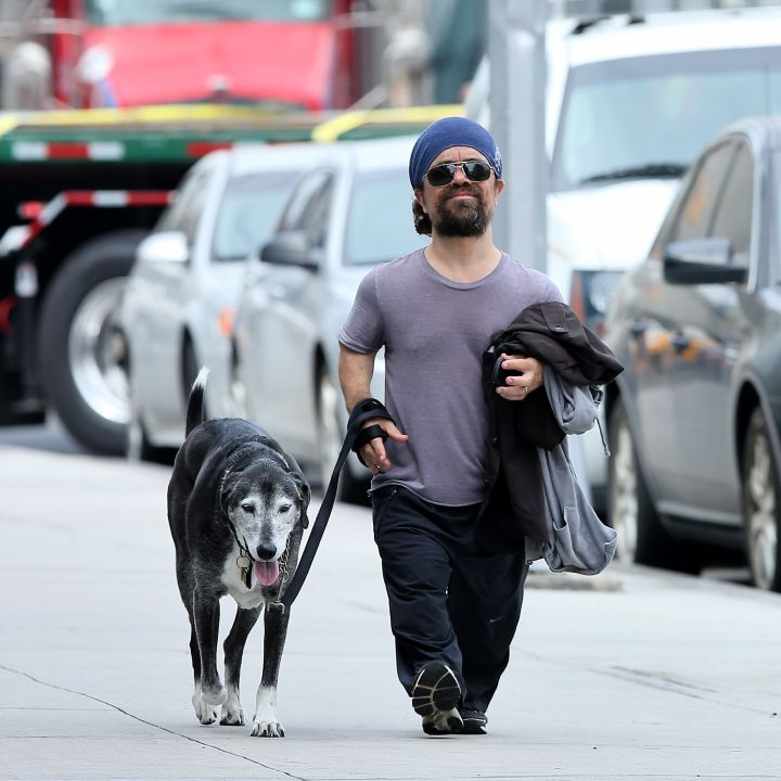 Game Of Thrones actor, Peter Dinklage walks his dog, Kevin in Meatpacking District, New York City.