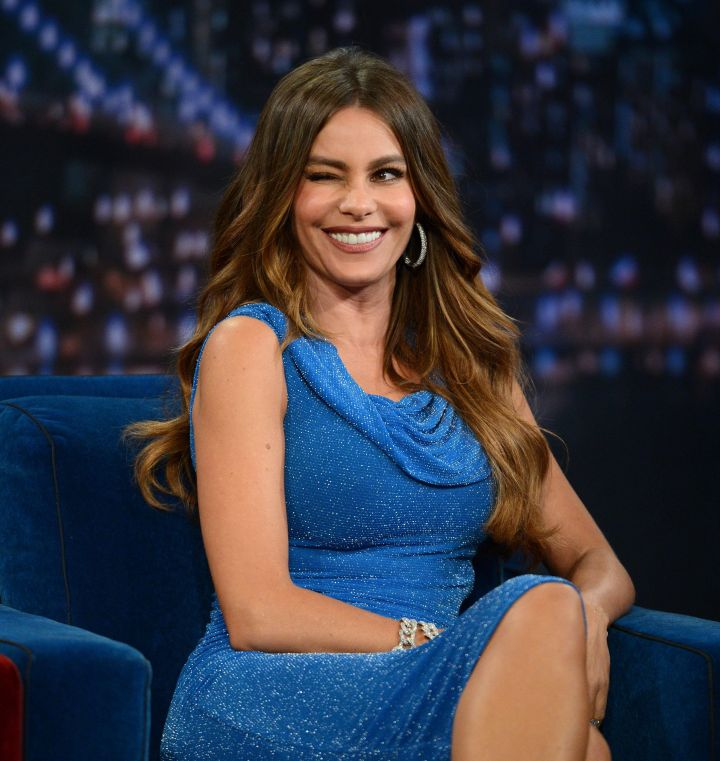 Sofia Vergara is the highest paid television actress. You've seen her face on commercials for Pepsi, AT&T, CoverGirl, and many more.