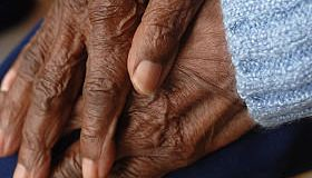 Senior Woman's Hands