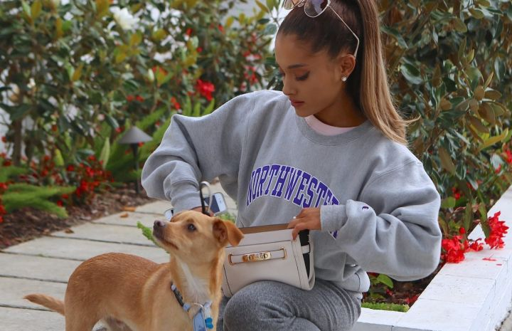 Ariana Grande's Dog Elevated Her Vogue Cover Shoot & The Internet Is Living