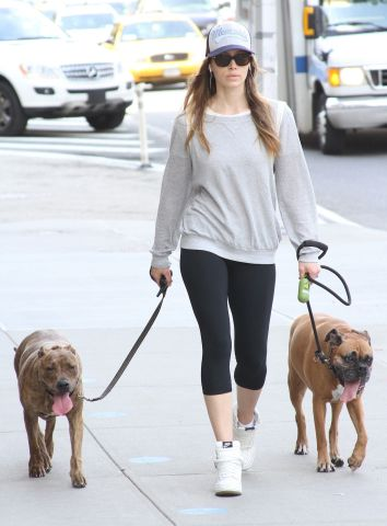 jessica biel - celebs and pitbulls