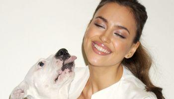 irina shayk - celebs and pitbulls