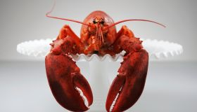 Lobster on cake stand