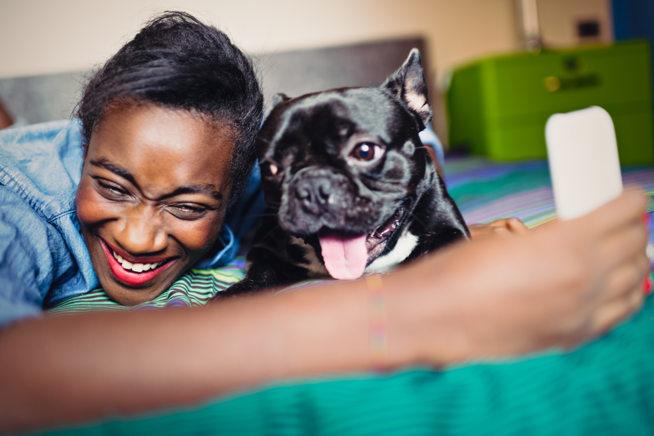 Young African Woman taking selfie with French bulldog