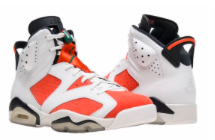 Gatorade Jordan 6
