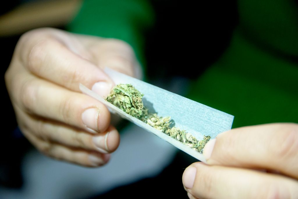 Female hands rolling a marijuana joint