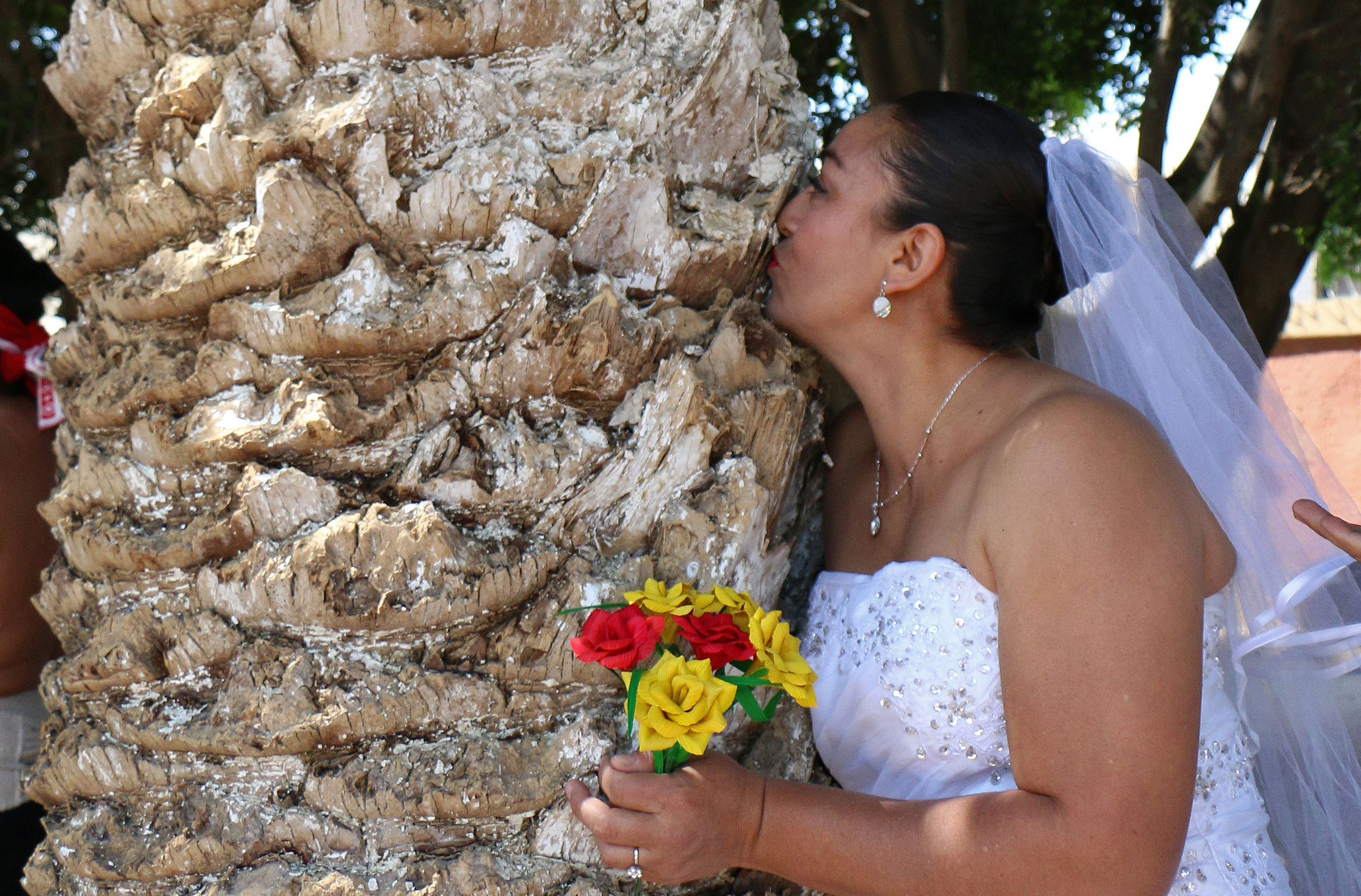 MEXICO-ENVIRONMENT-TREE-MARRIAGE
