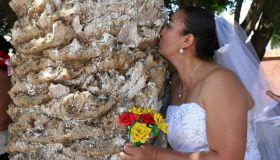 MEXICO-ENVIRONMENT-TREE-MARRIAGE