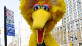 Sesame Street's Big Bird charactor Novem